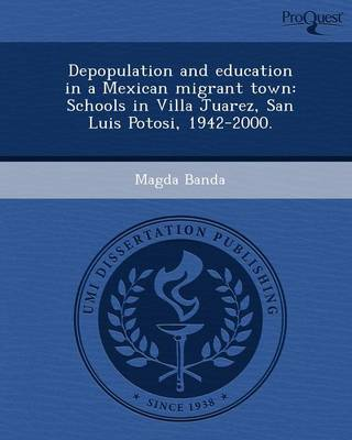 Depopulation and Education in a Mexican Migrant Town: Schools in Villa Juarez (Paperback)