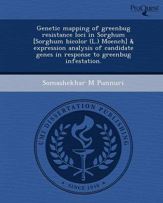 Genetic Mapping of Greenbug Resistance Loci in Sorghum (Paperback)