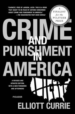 Crime and Punishment in America (Paperback)
