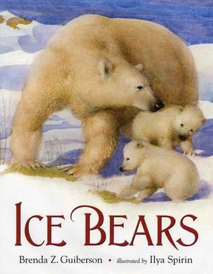Ice Bears (Paperback)
