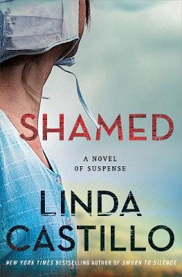 Shamed: A Kate Burkholder Novel (Hardback)