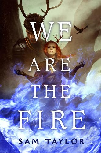 We Are the Fire (Hardback)