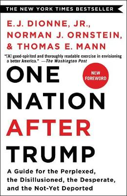 One Nation After Trump: A Guide for the Perplexed, the Disillusioned, the Desperate, and the Not-Yet Deported (Paperback)