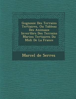 G Ognosie Des Terrains Tertiaires, Ou Tableau Des Animaux Invert Br S Des Terrains Marins Tertiaires Du MIDI de La France (Paperback)