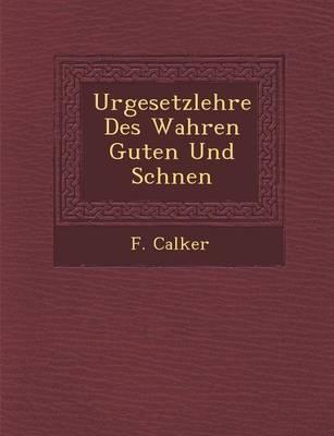 Urgesetzlehre Des Wahren Guten Und Sch Nen (Paperback)