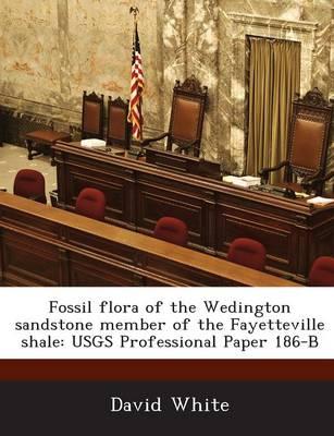 Fossil Flora of the Wedington Sandstone Member of the Fayetteville Shale: Usgs Professional Paper 186-B (Paperback)