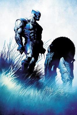 Wolverine: Prehistory (Paperback)