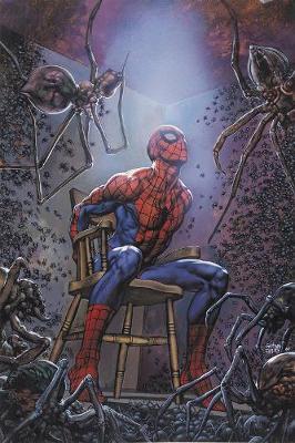Spider-man's Tangled Web Omnibus (Hardback)