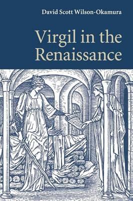 Virgil in the Renaissance (Paperback)