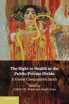 The Right to Health at the Public/Private Divide: A Global Comparative Study (Paperback)