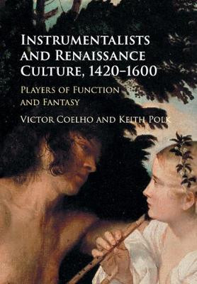 Instrumentalists and Renaissance Culture, 1420-1600: Players of Function and Fantasy (Paperback)