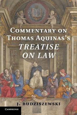 Commentary on Thomas Aquinas's Treatise on Law (Paperback)