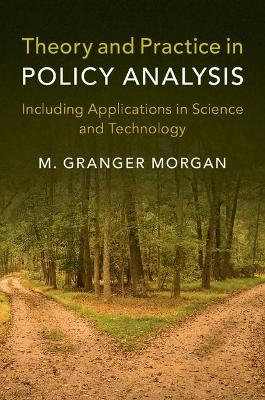 Theory and Practice in Policy Analysis: Including Applications in Science and Technology (Paperback)