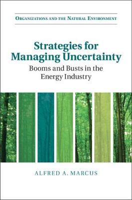 Organizations and the Natural Environment: Strategies for Managing Uncertainty: Booms and Busts in the Energy Industry (Paperback)