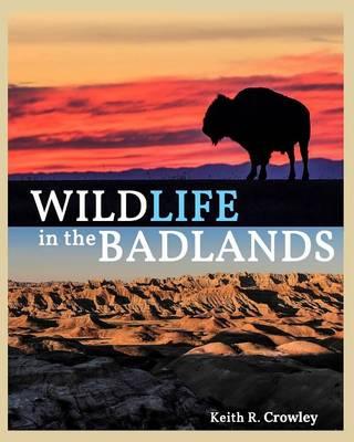 Wildlife in the Badlands (Paperback)