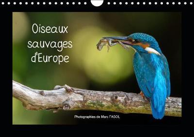 Oiseaux sauvages d'Europe 2019: Les plus belles et plus fascinantes especes d'oiseaux a observer en Europe, au fil des saisons - Calvendo Animaux (Calendar)