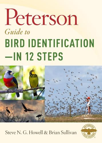 Peterson Guide to Bird Identification - In 12 Steps (Hardback)