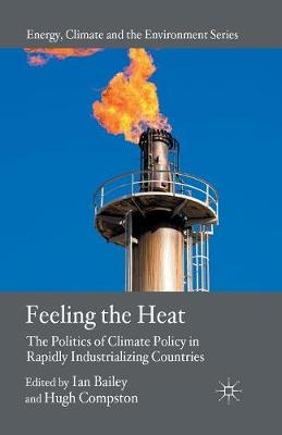Feeling the Heat: The Politics of Climate Policy in Rapidly Industrializing Countries - Energy, Climate and the Environment (Paperback)