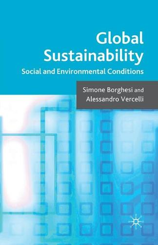 Global Sustainability: Social and Environmental Conditions (Paperback)