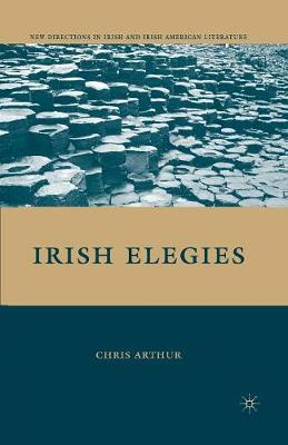 Irish Elegies - New Directions in Irish and Irish American Literature (Paperback)