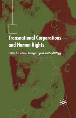 Transnational Corporations and Human Rights (Paperback)