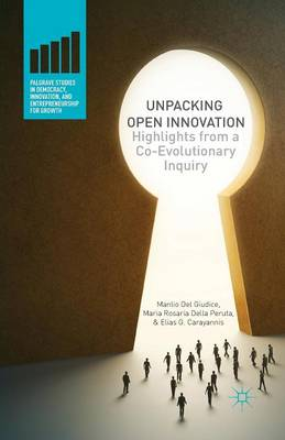 Unpacking Open Innovation: Highlights From a Co-Evolutionary Inquiry - Palgrave Studies in Democracy, Innovation, and Entrepreneurship for Growth (Paperback)