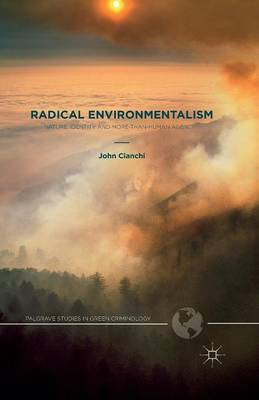 Radical Environmentalism: Nature, Identity and More-than-human Agency - Palgrave Studies in Green Criminology (Paperback)