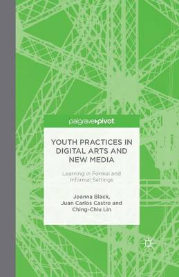 Youth Practices in Digital Arts and New Media: Learning in Formal and Informal Settings (Paperback)