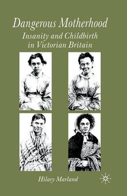 Dangerous Motherhood: Insanity and Childbirth in Victorian Britain (Paperback)
