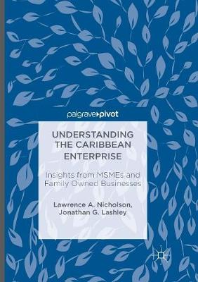 Understanding the Caribbean Enterprise: Insights from MSMEs and Family Owned Businesses (Paperback)