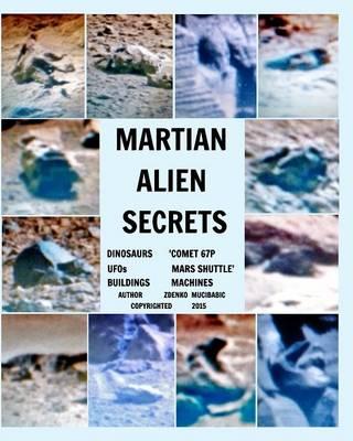 Martian Alien Secrets (Paperback)