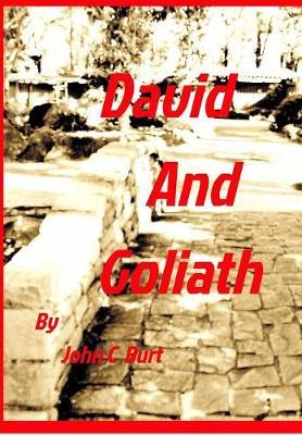 David and Goliath (Hardback)