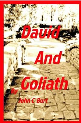 David and Goliath (Paperback)