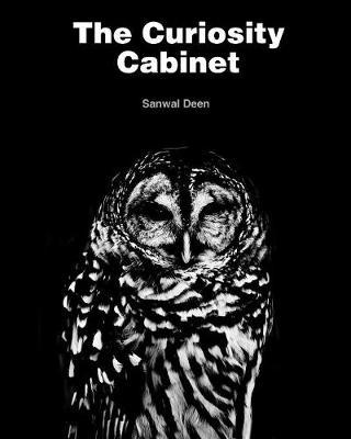 The Curiosity Cabinet (Paperback)