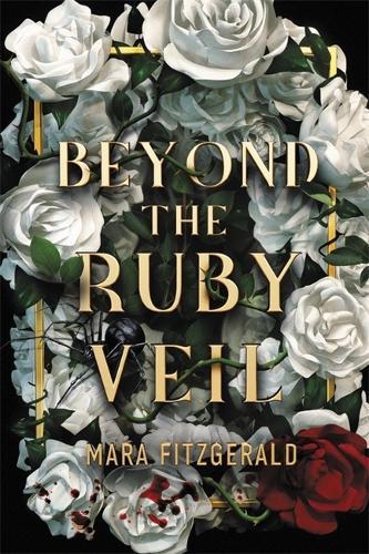 Beyond the Ruby Veil (Hardback)