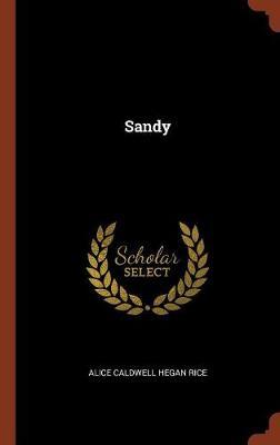 Sandy (Hardback)