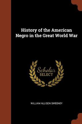 History of the American Negro in the Great World War (Paperback)