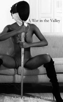 A War in the Valley (Paperback)
