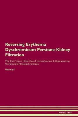 Reversing Erythema Dyschromicum Perstans: Kidney Filtration The Raw Vegan Plant-Based Detoxification & Regeneration Workbook for Healing Patients. Volume 5 (Paperback)