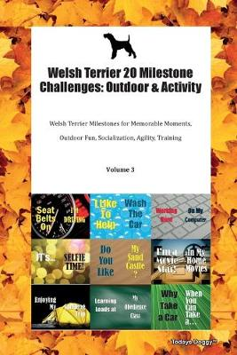Welsh Terrier 20 Milestone Challenges: Outdoor & Activity Welsh Terrier Milestones for Memorable Moments, Outdoor Fun, Socialization, Agility, Training Volume 3 (Paperback)