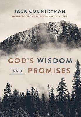 God's Wisdom and Promises (Hardback)