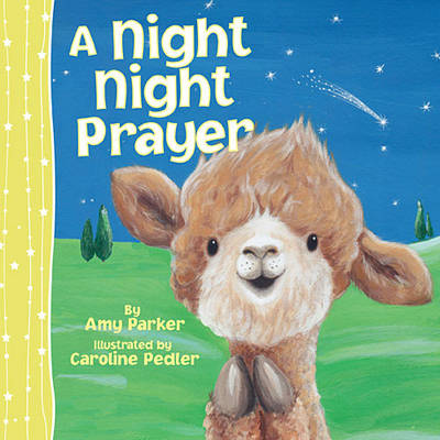 A Night Night Prayer - Night Night (Board book)