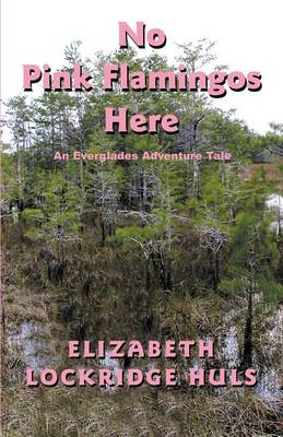 No Pink Flamingos Here (Paperback)