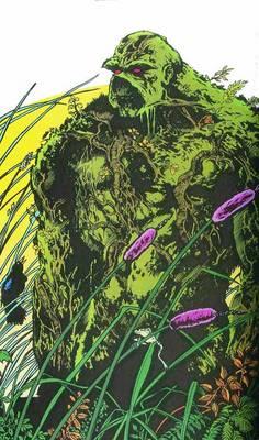 Saga Of The Swamp Thing HC Book 02 (Hardback)