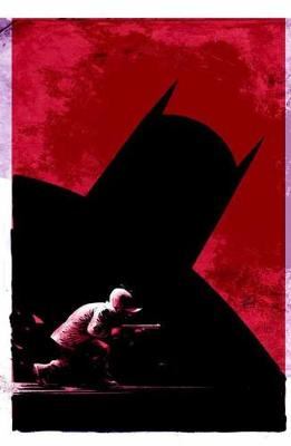 DC Meets Looney Tunes (Paperback)