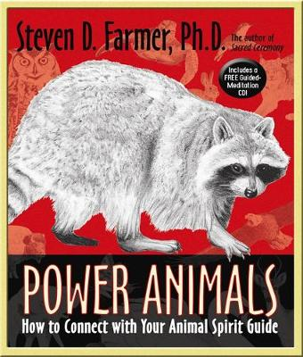 Power Animals: How to Connect with Your Animal Spirit Guide (Paperback)