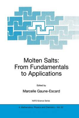 Molten Salts: From Fundamentals to Applications - NATO Science Series II 52 (Hardback)