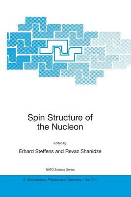 Spin Structure of the Nucleon - NATO Science Series II 111 (Hardback)