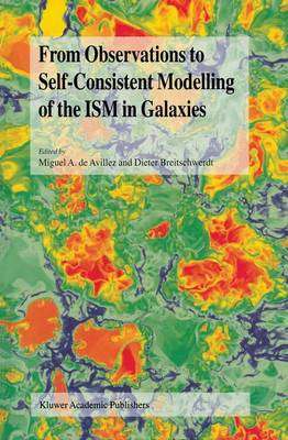 From Observations to Self-Consistent Modelling of the ISM in Galaxies: A JENAM 2002 Workshop, Porto, Portugal, 3-5 September 2002 - NATO Science Series II (Hardback)