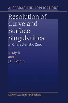 Resolution of Curve and Surface Singularities in Characteristic Zero - Algebra and Applications 4 (Hardback)